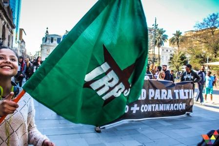 Manifestante con Bandera